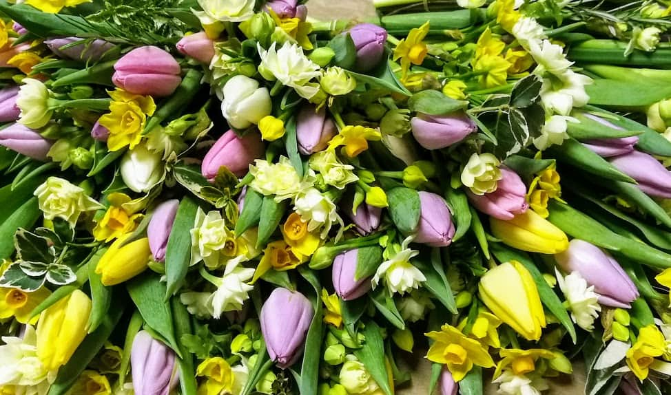 English grown tulips and narcissi