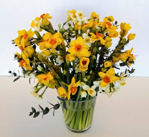 Scented Narcissi Gift Bouquet