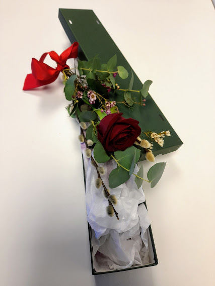 Valentines flowers, a single red rose and presentation box