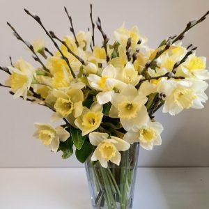 Cream Daffodils, Springtime flowers for an April Wedding,