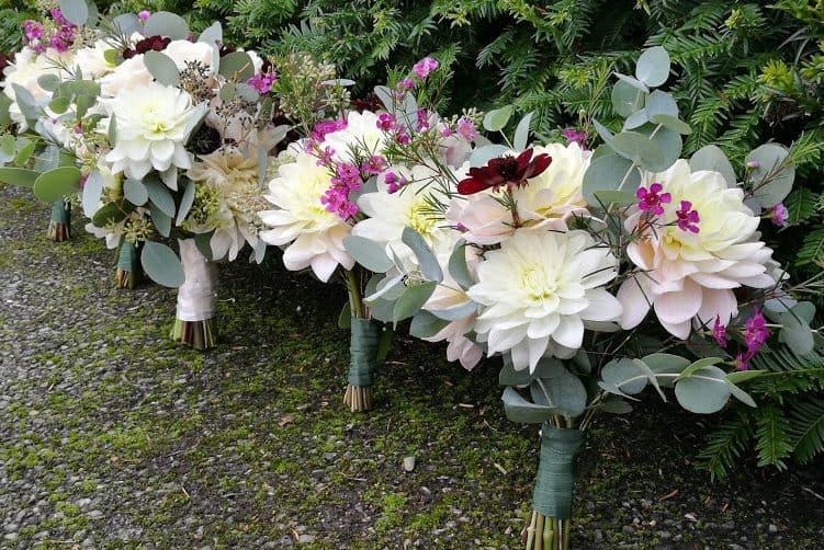 dahlia bouquets
