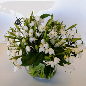 Snowdrop Mothers Day Flowers